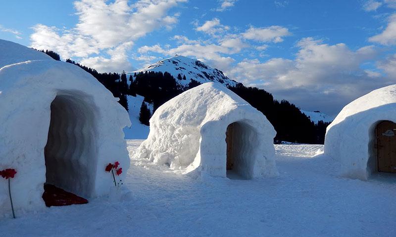 Snow-house-