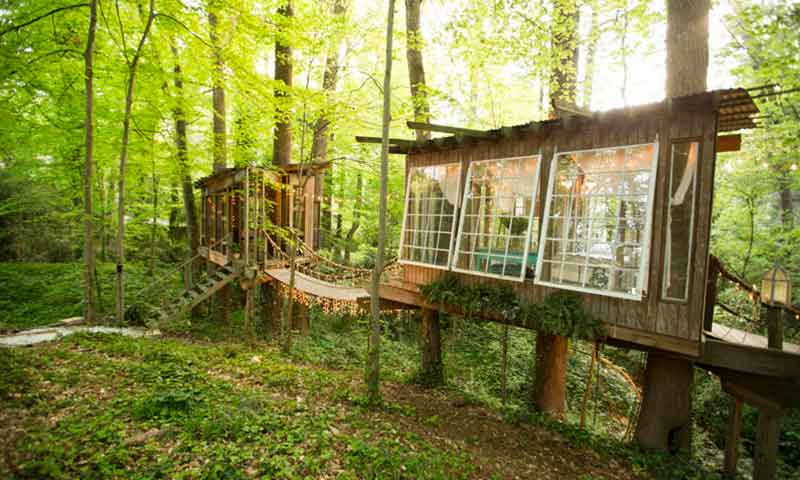 Tree-house-